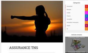 assurance tns
